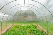 Теплицы из поликарбоната. Увеличение урожайности